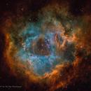 Rosette Nebula  (Caldwell 49) SHO + RGB stars,                                Jian Yuan Peng