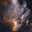Pelican Nebula IC 5070,                                William Burns