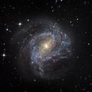 M83 Southern Pinwheel,                                jlangston_astro