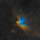 Wizard Nebula in Cepheus - SHO (Hubble Palette),                                Steve Milne
