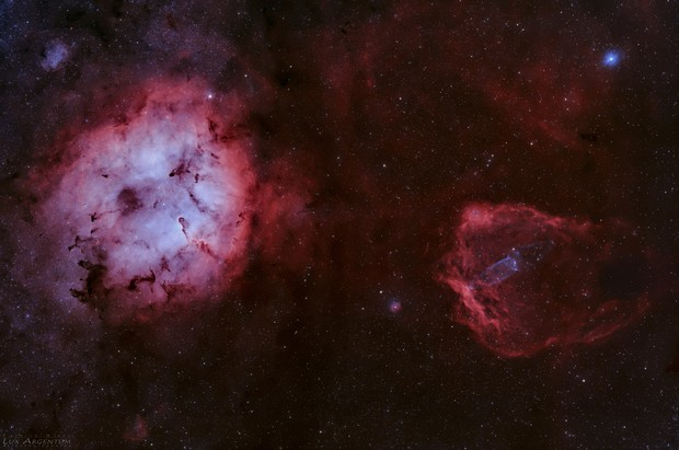 Elephant Trunk, Flying Bat, and Giant Squid Nebulae (IC1396, Sh2-129, Ou4),                                Patrick Hsieh