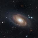 Galassia Sigaro e Galassia di Bode,                                Andrea Losi