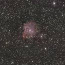 NGC 2174,                                Ryan Betts