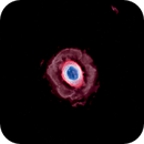 Ring Nebula - Starless,                                Jim Matzger