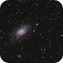 NGC 2403,                                Eric Walden