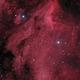 Pelican Nebula - IC 5070 - L(Ha)RGB,                                Thomas Richter