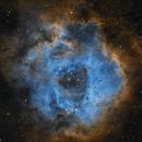 Rosette Nebula SHO,                                BBRAUNCCP