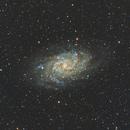 M33 Pinwheel Galaxy,                                Angelillo