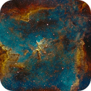 IC1805,                                Vincent