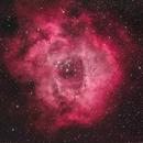 First Light Astro-Physics 92mm Stowaway Rosette Nebula (NGC 2239),                                Jeff Ball