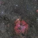 Panoramic View of IC1396 and Surrounding Area,                                Yuichi Kawamoto