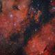 IC 1318 B/C Butterfly Nebula,                                Frank Iwaszkiewicz