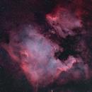 The North America Nebula (NGC 7000),                                OlympusMons-UMONS