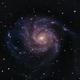 M101 Pinwheel Galaxy,                                starbuck