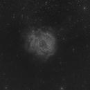 Rosette Nebula - NCG2244 Widefield,                                NewfieStargazer