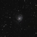 M101,                                Matt
