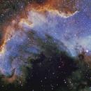NGC7000 The Wall,                                Pomerol