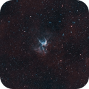 NGC 2359 - Thor's Helmet,                                Tommy Lease