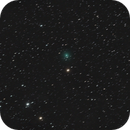 Comet C/2019 Y4-D (ATLAS)  in Ursa Major,                                Joostie