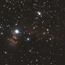 Horse head nebula,                                Leo Marchadier