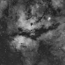 Nebuleuse du papillon - Cygne ic1318,                                S. DAVID