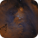 Cone Nebula bi-color,                                whitenerj