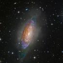 NGC 3521,                                Miles Zhou