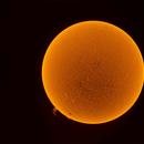 September Sun 2016,                                Onur Atilgan
