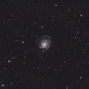 Pinwheel Galaxy (M101) and Companions,                                Richard Beck