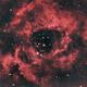 NGC2244 in Bi-Colour,                                Ethan Wong