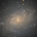 Triangulum Galaxy - M33,                                Ray's Astrophotography