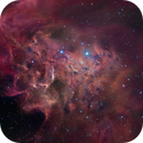 IC 405 Flaming Star Nebula - Acquired by Gary Lopez :-),                                Daniel Nobre