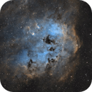 IC 410 - The Tadpole Nebula in SHO,                                Benny Colyn