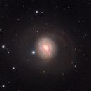 M77 with supernova sn2018ivc,                                Andrew Lockwood