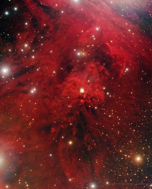 NGC 1999 and surroundings,                                Ruben Barbosa