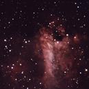 M17 - Omega Nebula,                                Roman Pierce