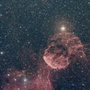 IC 443 Jellyfish Nebula RASA Ha+OSC,                                Brandon Tackett