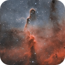 IC1396 - Elephant's Trunk Nebula,                                Henrique Silva