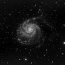 M101 Pinwheel Galaxy,                                Ed Bacon