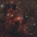 Cave Nebula,                                Robin Clark - EAA imager