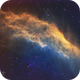 NGC 1499 California Nebula,                                Richard Willits