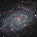 M33 LRGB with Ha,                                Frank Zoltowski