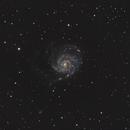 M101,                                HansTrapp