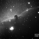 Horsehead Nebula,                                John Burns