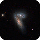 Siamese Twins Galaxies,                                Ron