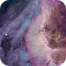 IC5070 Pelican Nebula (HaOIIHb),                                Johan Bakker