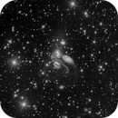 Stephan's Quintet, Luminescence,                                Eric Coles (coles44)