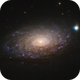 M63 - Sunflower Galaxy,                                Joe Fox