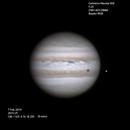 Jupiter ,                                Brian Ritchie