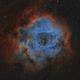 Rosettennebel Bicolor NGC2244,                                Alexander Voigt